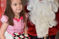 cisc-children-christmas-party-17-09