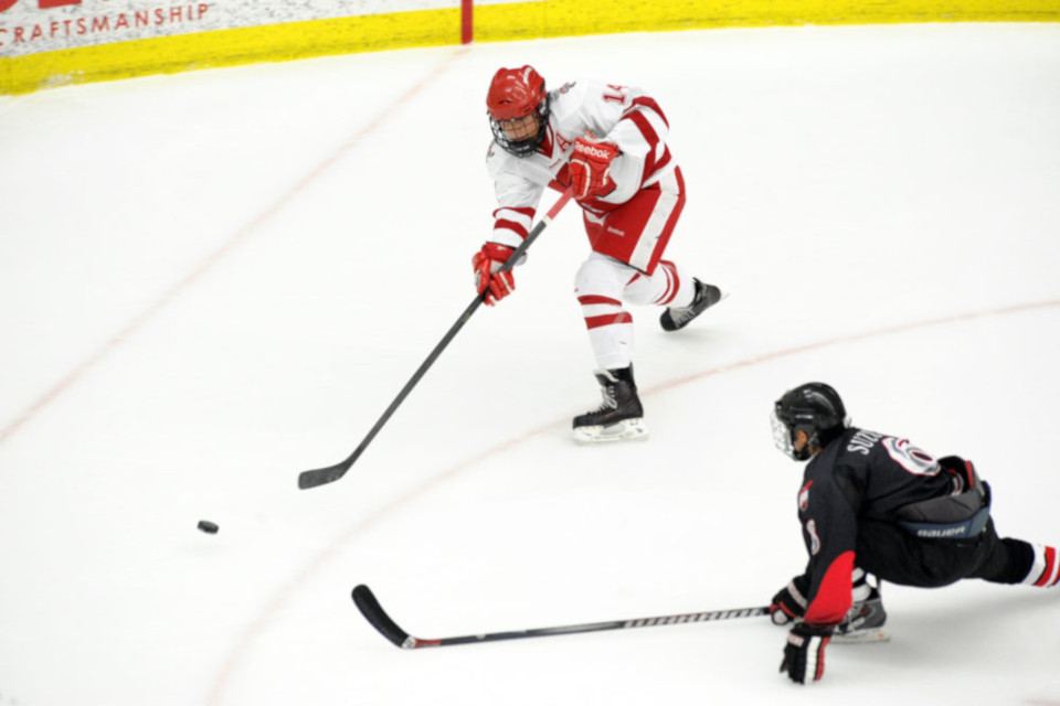 Calgary Hitmen vs. Brandon Wheat Kings <br />Multi-Cultural Hockey Night